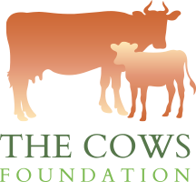 The Cows Foundation